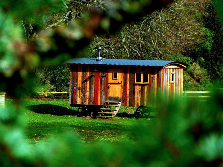 Tiny House kaufen – das sollten Sie darüber wissen